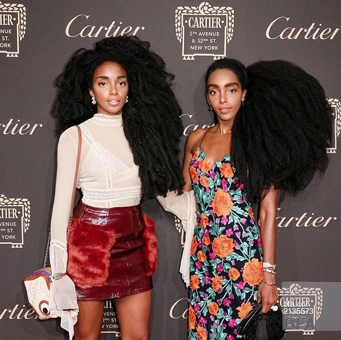 twins-hair-urban-bush-babes-cipriana-tk-quann-12-58c654c3cbbbe__700